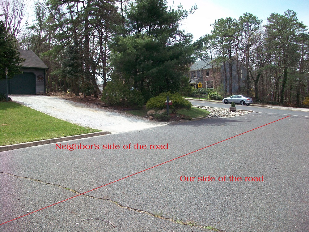 Yard Makeover 2009 – Before