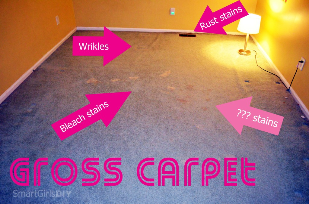 Tearing Out Gross Carpet