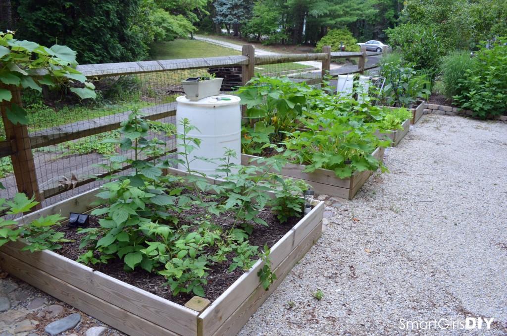 Smart Girls DIY - Garden #10
