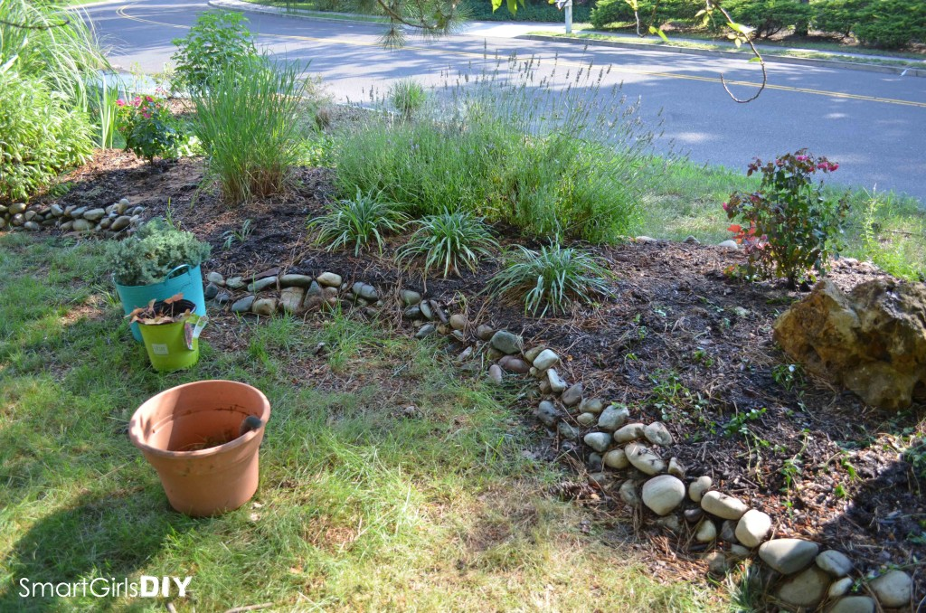 Smart Girls DIY - Garden #4 adding new plants