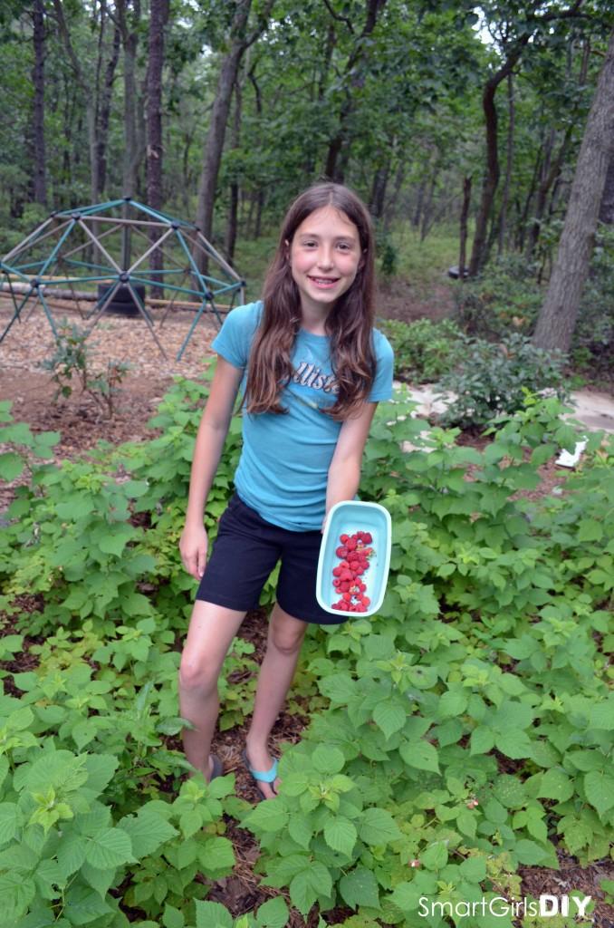 Smart Girls DIY - Garden #5 raspberry patch