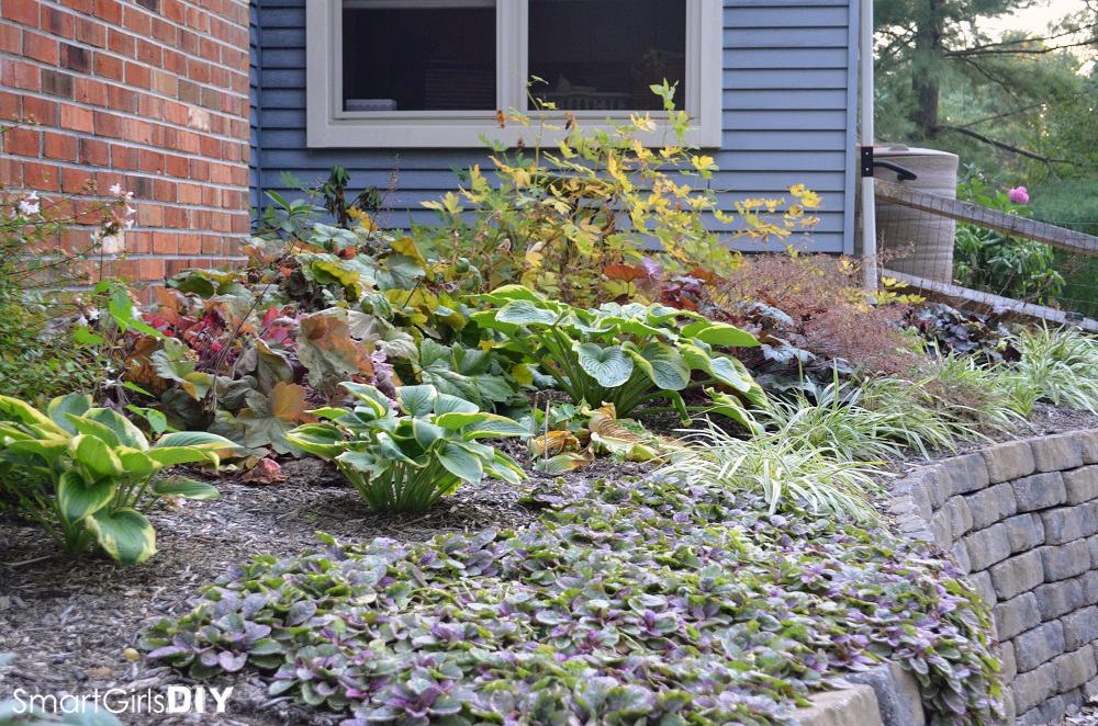 Smart Girls DIY -Garden #7