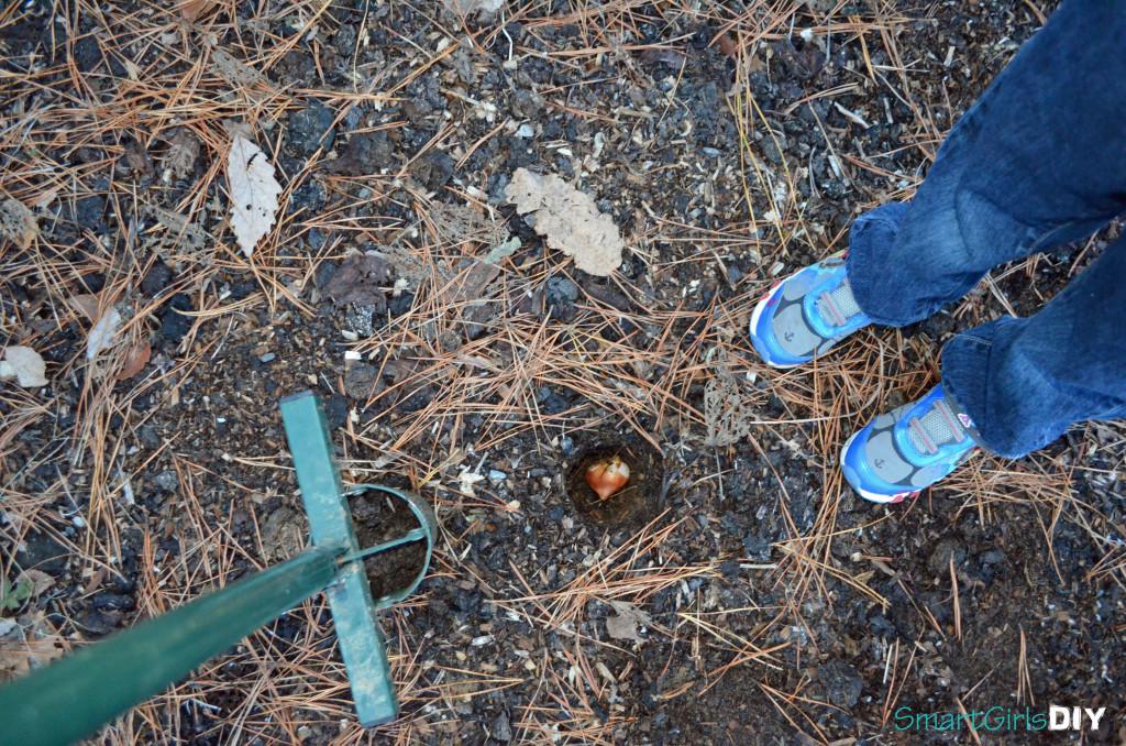 Little feet planting bulbs