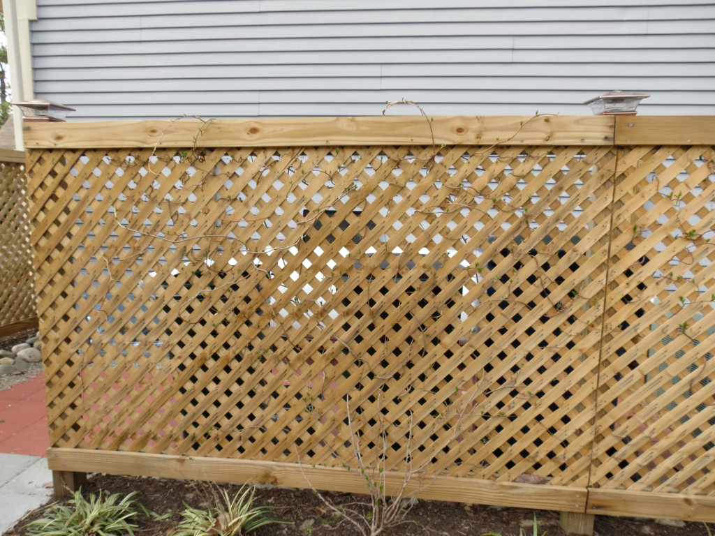 Lattice around garbage cans and AC unit