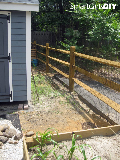 Split-rail fence - new shed - raised beds - lots of weeds
