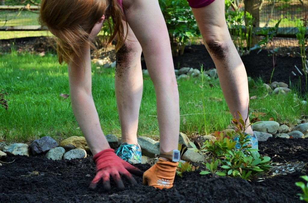 Smart Girls DIY - spreading mulch