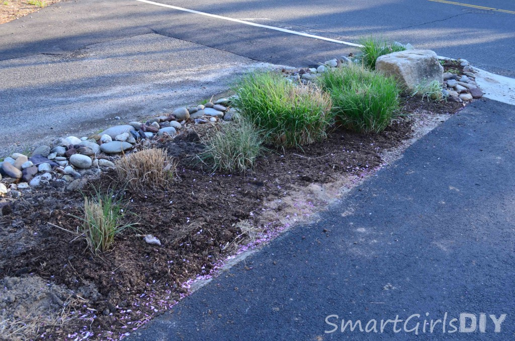 Transplanting grass and covering with compost