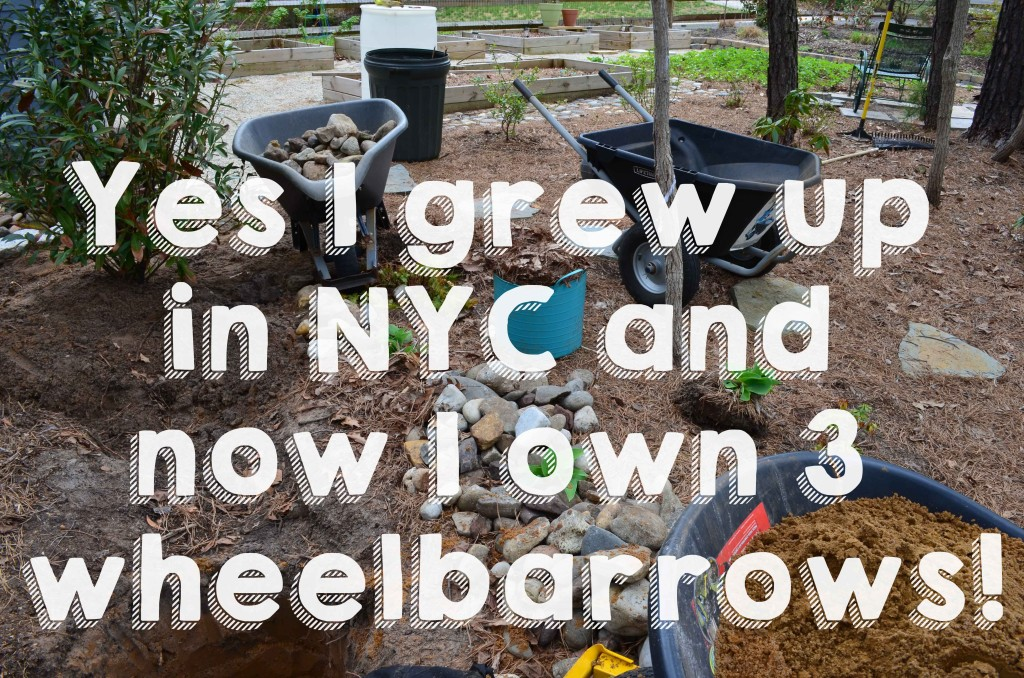Yes I grew up in NYC and now I own 3 wheelbarrows