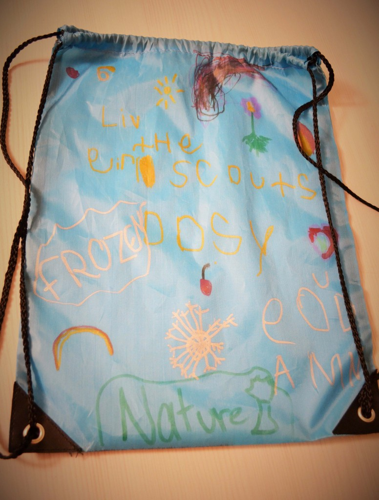 Daisy Girl Scout SWAPS bag fabric marker craft