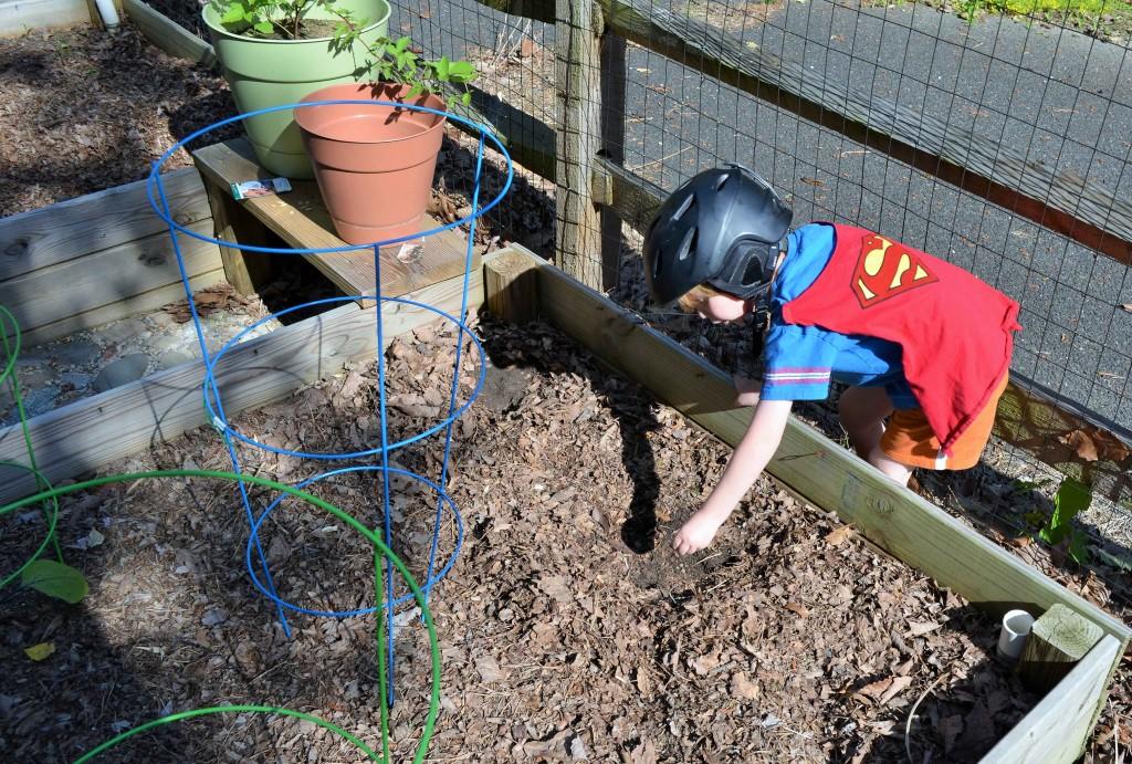 My super helper planting watermelon seeds