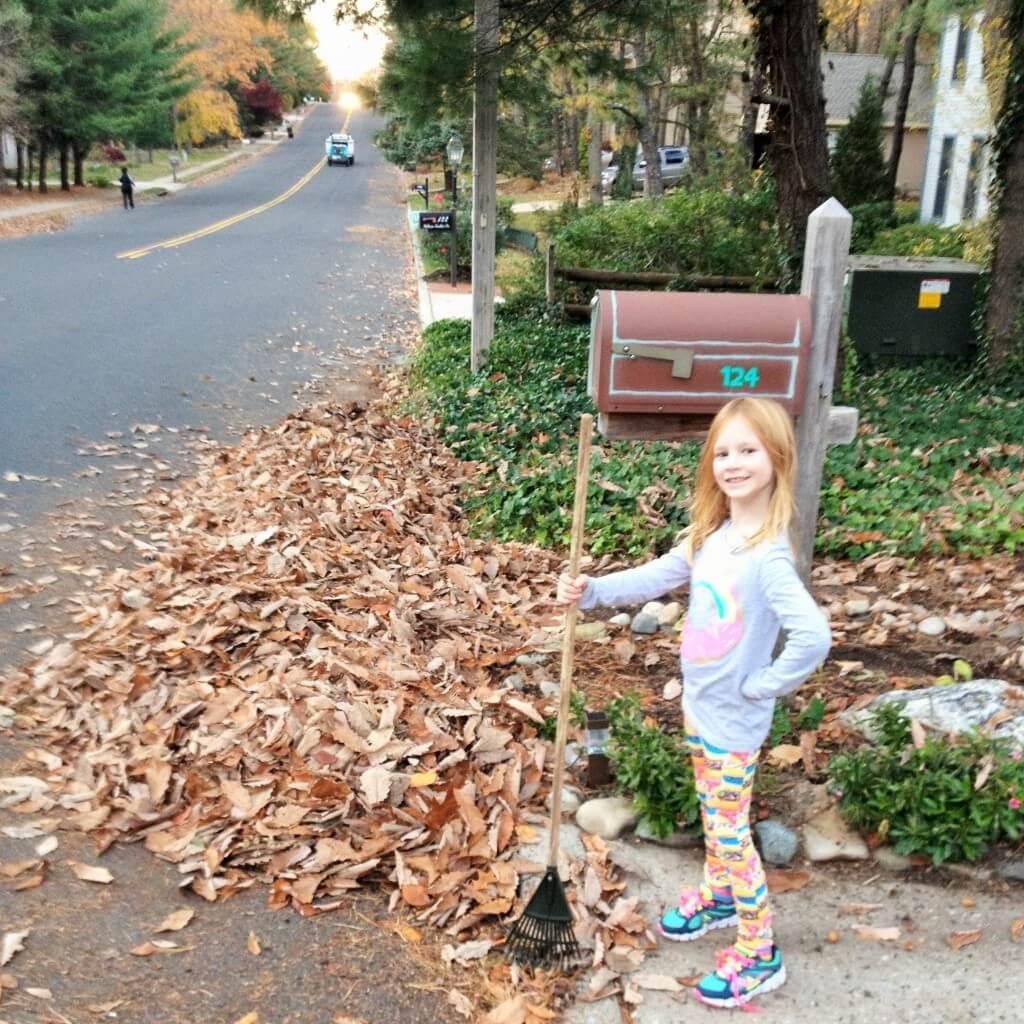 Must clean leaves before sealing driveway